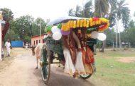 யாழ் சங்கானையில் பண்டைய கலாச்சாரத்துடன் நடந்த கலியாணக் காட்சிகள்