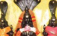 உங்களுக்கு நாக தோஷம் இருக்கிறதா:இதை செய்யுங்கள் .!