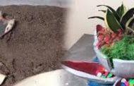 தூக்கி எரியும் வாழைபூ மட்டையை வைத்து இப்படி ஒரு விலையுயர்ந்த பொருளா?