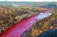 சிவப்பு நிறத்தில் மாறிய ஆறு.. இதுதான் காரணமா?
