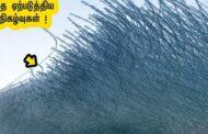 ஒருநிமிடம் குலைநடுங்கவைத்த இயற்க்கை நிகழ்வுகள் !