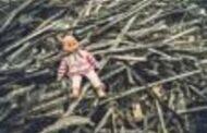 மைதானத்தில் மர்மமாக இறந்து கிடந்த 11 மாத குழந்தை