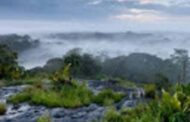 மிகப்பெரிய பிரமாண்ட பூங்காவில் திகில் நிறைந்த அழகிய இடம்!