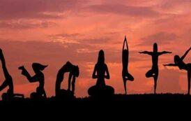 சர்வதேச யோகா தினம்: தினமும் யோகா செய்வதால் தீரும் பிரச்சனைகள்
